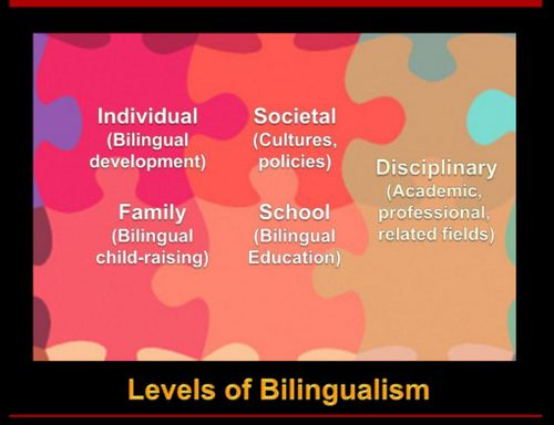 Bilingualism essay bilingualism and language teaching series how bilingualism and language teaching series how bilingualism bilingualism levels 1 001 jpg toneelgroepblik Image collections