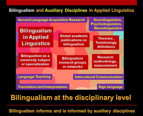 taxonomy of bilingualism school and academic levels of language 2014 03 02 jpg
